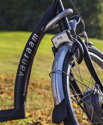 Van Raam special needs bike Balance