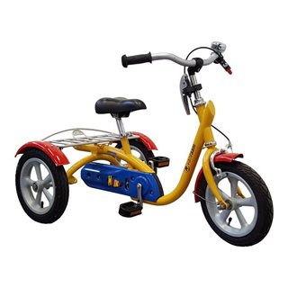 Husky tricycle Van Raam special needs bikes