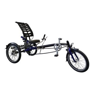 Easy Sport Van Raam Special needs bike