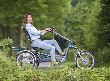 Assemble the perfect Easy Rider tricycle yourself