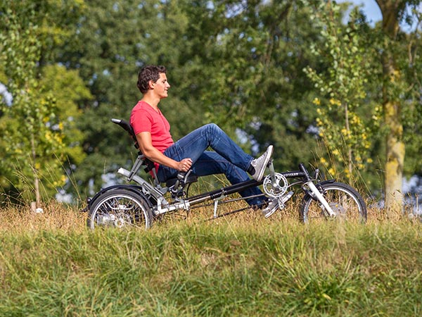 Van Raam Easy Sport electric tricycle for adults