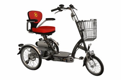 easy go scooter trike