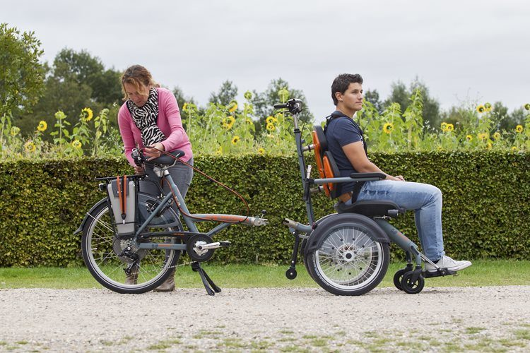 Divisible frame wheelchair bike