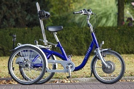custom made special needs bikes