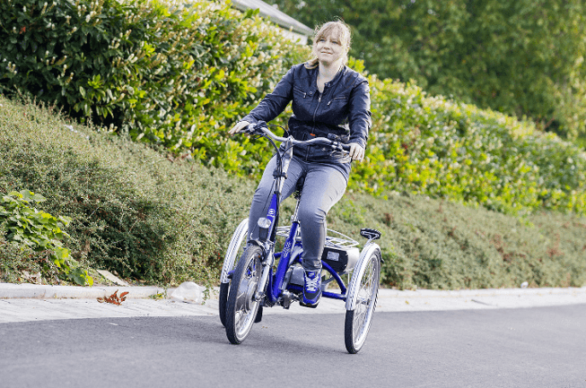 Tricycle-for-small-adults-Midi-Van-Raam