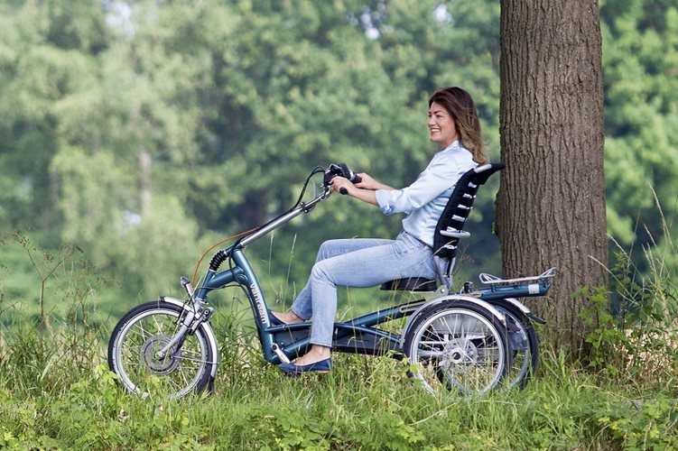 Easy Rider Van Raam tricycle for adults