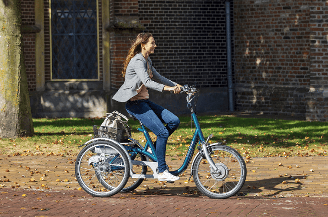 tricycle-for-adults-Maxi-Van-Raam