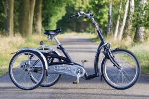 Low-step-through-trike-for-seniors