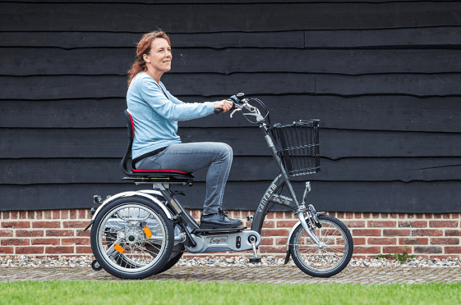 Vélo-scooter Easy Go Van Raam