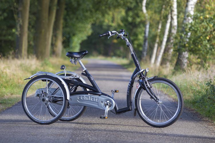 Maxi Comfort tricycle - Van Raam