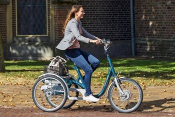 Traditionele Van Raam e-bike driewieler