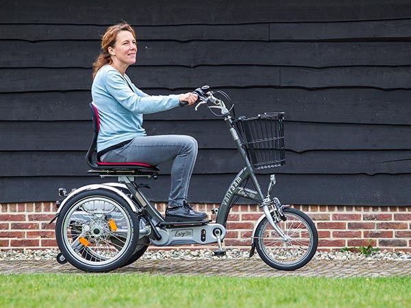 Van Raam Easy Go electric tricycle for adults