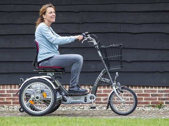 Easy Go: The all-in-one tricyle, electric bike and mobility scooter.