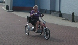 Tricycle Easy Rider