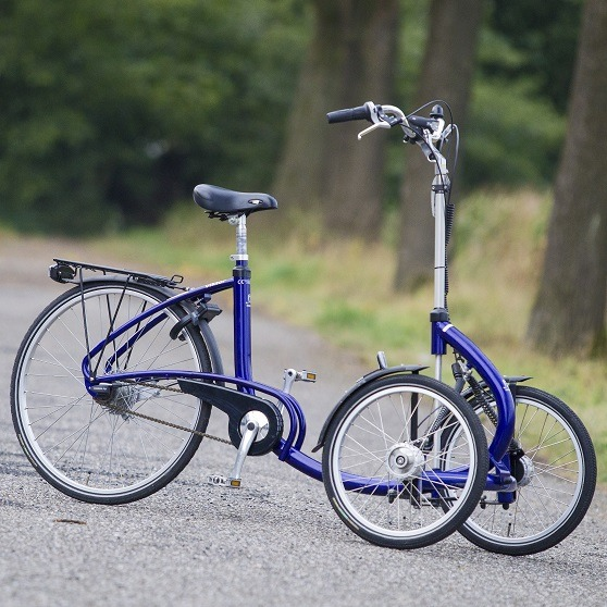 Bike tricycle t-bike