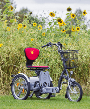 Combination-bicycle-and-mobility-scooter-Van-Raam