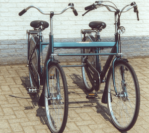 double rider cycle (1995)