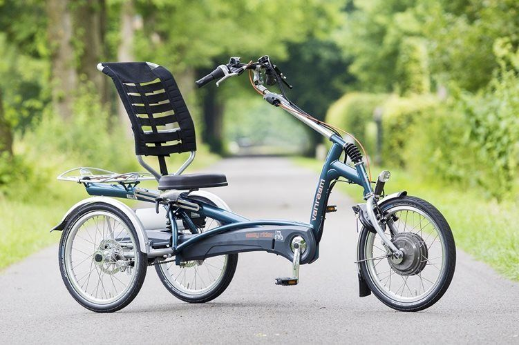 Electric Tricycle Easy Rider